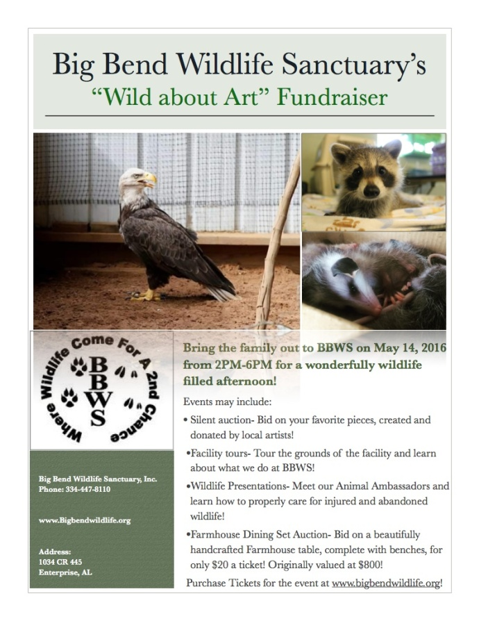 Wild About Art Fundraiser Flyer
